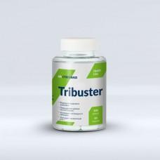 Tribuster (CYBERMASS)